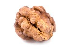 Walnuts on isolated Royalty Free Stock Photo