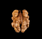 Walnuts isolated on black background. Close-up view Royalty Free Stock Photo
