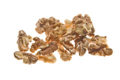 Walnuts isolated on the white Stock Photography