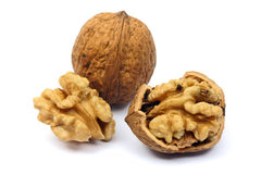 Walnuts isolated on white royalty free stock photography