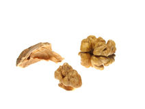 Walnuts isolated on white background Royalty Free Stock Image