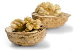 Walnuts. Isolated on White Background Stock Image