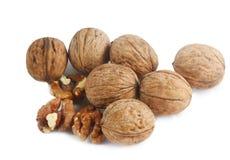 Walnuts isolated Stock Photos