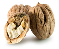 Walnuts isolated on the white background Royalty Free Stock Photos