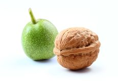 Walnuts isolated white background Royalty Free Stock Photography