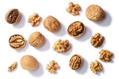 Walnuts j. regia seeds, paths, top stock image