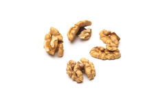 Walnuts (Juglans regia) Royalty Free Stock Photography