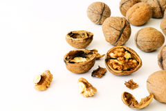 Walnuts. A large pile, large size Royalty Free Stock Photo