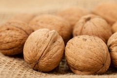 Walnuts laying on jute Stock Images