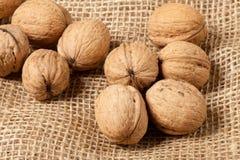 Walnuts laying on jute Royalty Free Stock Photos