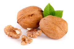 Walnuts with leaf isolated on white background.  Royalty Free Stock Photo