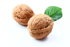 Walnuts with leaf on white background. Walnuts with lleaf  isolated white background Royalty Free Stock Image