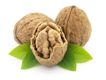 Walnuts with leaves Stock Images