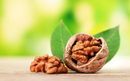 Walnuts and leaves Stock Image