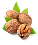 Walnuts. Royalty Free Stock Image