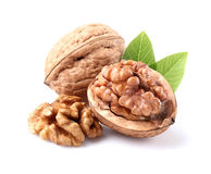 Walnuts with leaves Stock Image