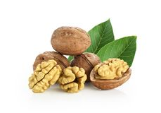 Walnuts with leaves Royalty Free Stock Image