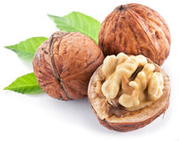 Walnuts with leaves. Stock Images