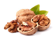 Walnuts with leaves Stock Photo
