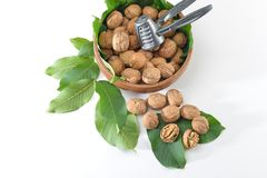 Walnuts and leaves on white background stock photos