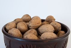 Walnuts lie in a bowl top view close-up stock photo