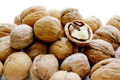 Walnuts in a light background Stock Photos