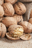 Walnuts on linen background Stock Photography