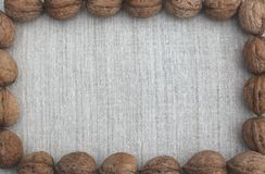 Walnuts on linen background Stock Image