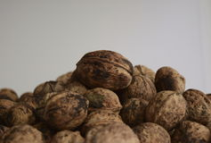 Walnuts on the white background. A lot of Walnuts on the white background Royalty Free Stock Photo