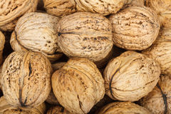 Walnuts. Macro of walnuts for background Stock Photos