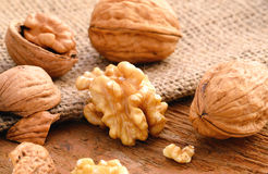 Walnuts - Macro Photography Royalty Free Stock Images