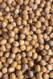 Walnuts. Market in Forcalquier, Provence, France Stock Image