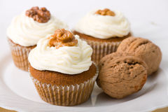 Walnuts Muffins royalty free stock photography