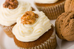 Walnuts Muffins Stock Photos