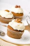 Walnuts Muffins royalty free stock photos