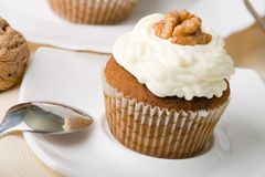 Walnuts Muffins royalty free stock images