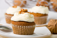 Walnuts Muffins stock image