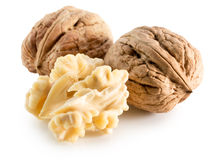 Walnuts with nucleus isolated on the white background Royalty Free Stock Photography