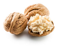 Walnuts with nucleus isolated on the white background.  stock photos