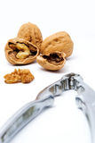 Walnuts and Nut Cracker. A steel nutcracker and three walnuts, one cracked open to reveal the nut inside Royalty Free Stock Photos
