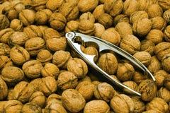 Walnuts and Nut Cracker Stock Photos