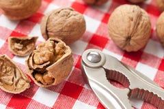 Walnuts and nutcracker Stock Photography