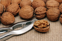 Walnuts and a Nutcracker Stock Image