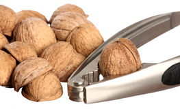 Walnuts and a nutcracker Royalty Free Stock Photo