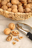 Walnuts and Nutcracker Stock Image