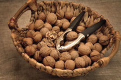 Walnuts and Nutcracker Stock Photos