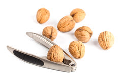 Walnuts and nutcracker Stock Photo