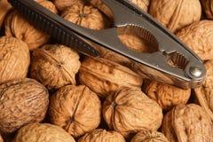 Walnuts and nutcracker stock image