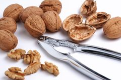 Walnuts and a nutcracker. On a white background stock image
