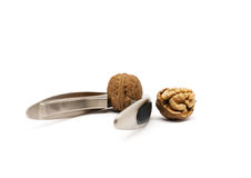 Walnuts with nutcracker. Isolated on white background with clipping path Stock Images